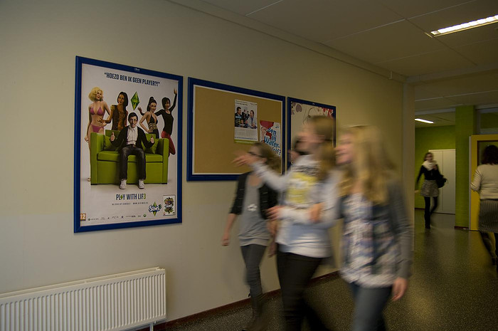 Sims posters