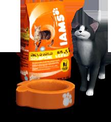 iams-catfood