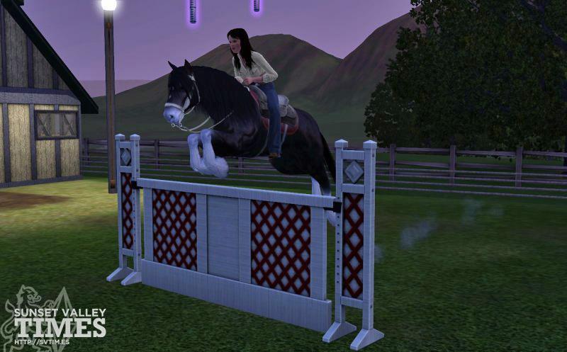 Sims 3 pets серийный номер